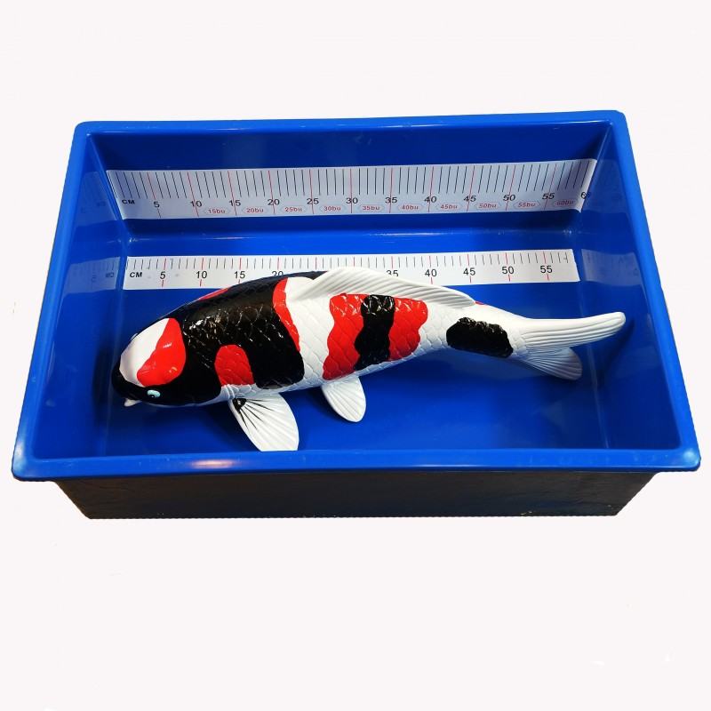 Small Rectangular Koi Measuring Tub (IN-STORE PICKUP ONLY)