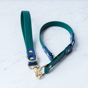 "Adventure Leash Training Tab (1"")"