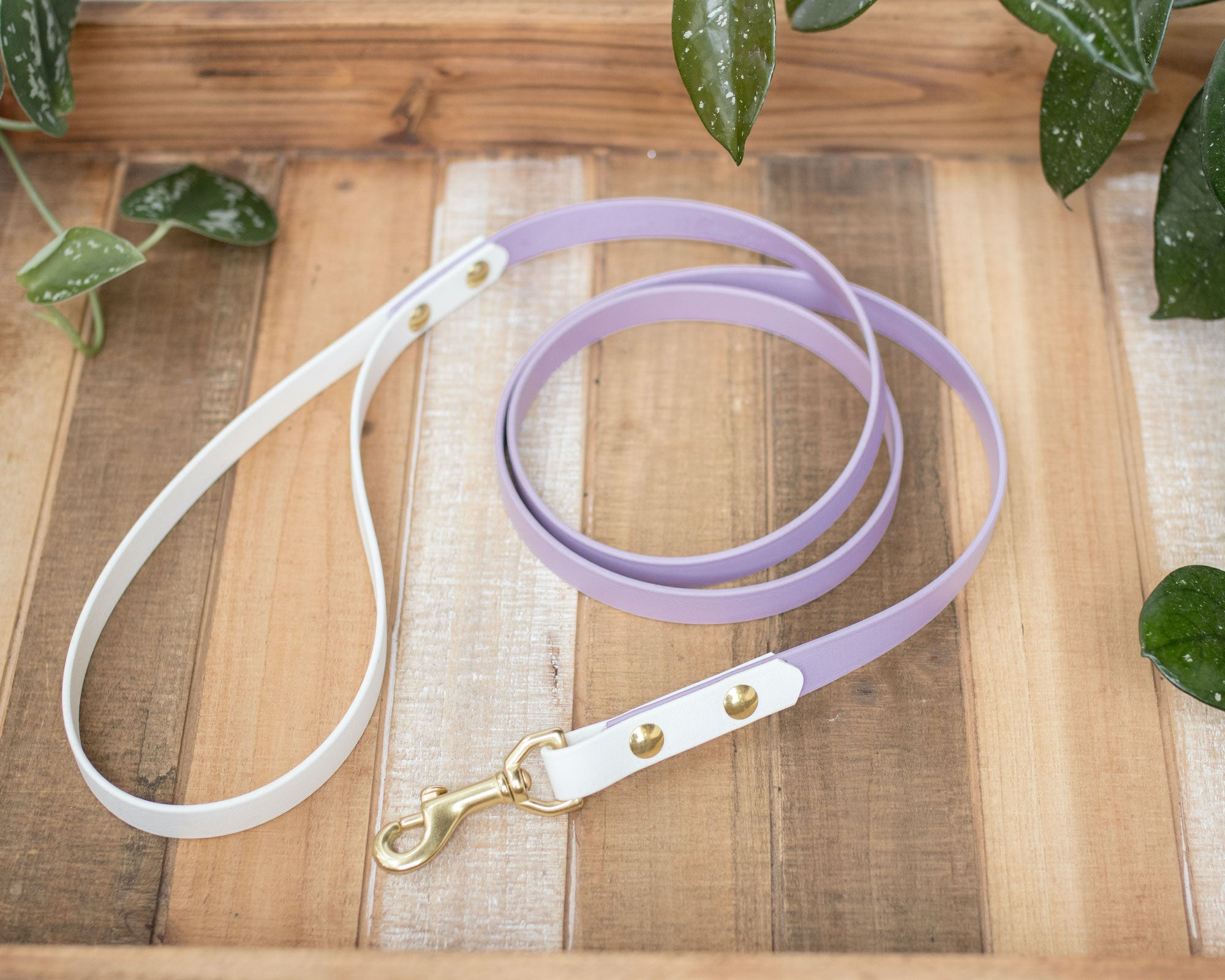 "Adventure Leash (5/8"")"