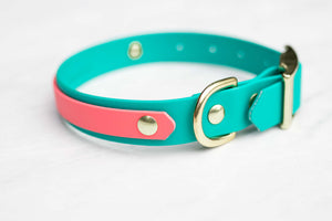 "Adventure Buckle Collar: Layered Style (1"")"