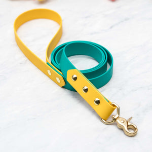 "Adventure Leash (1"")"