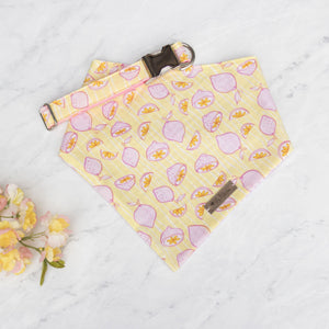 Pink Lemonade Collar
