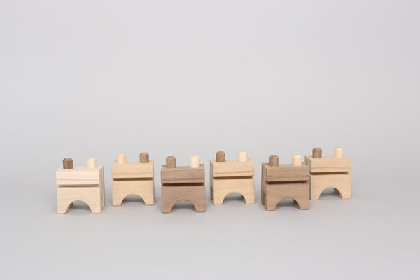 Monroe Workshop Frog Counting Block Set