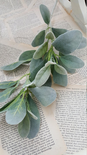 4 Lambs Ear Stems  - Farmhouse Florals