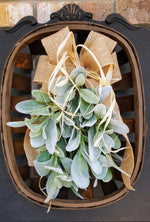 Lambs Ear Tobacco Basket Wall Decor Farmhouse Style - Farmhouse Florals