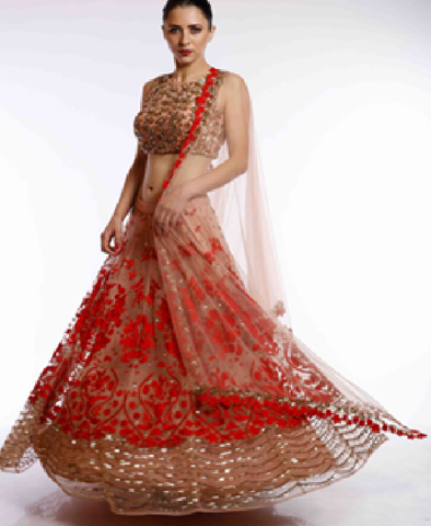 Red Net Lehenga with Plain Border