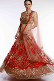 Net Gold and Red Lehenga
