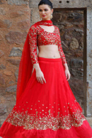 Net Sparkle Red Lehenga