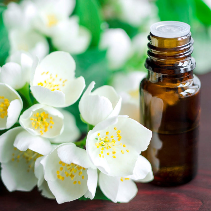 Jasmine 5% Essential Oil