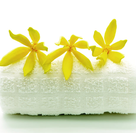 Buy Ylang Ylang Flower Water at Spirit Aroma for only $9.00
