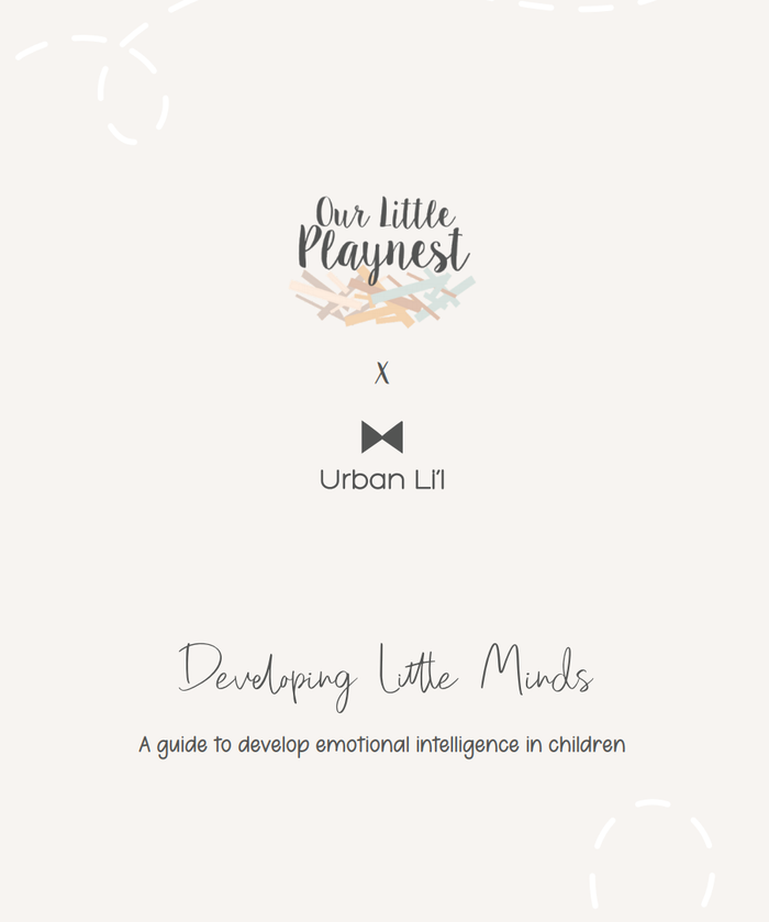 Developing Little Minds PDF Guide