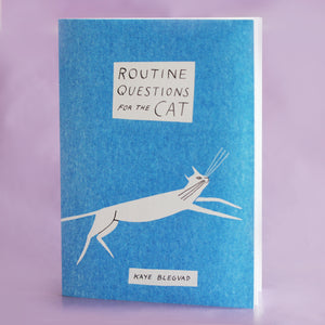 Routine Questions For The Cat