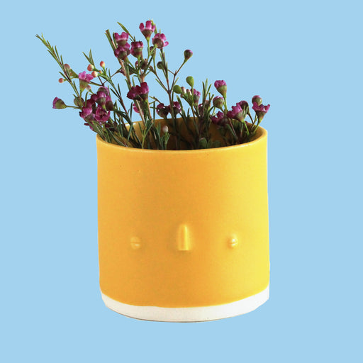 Solid Mustard Faceplanter