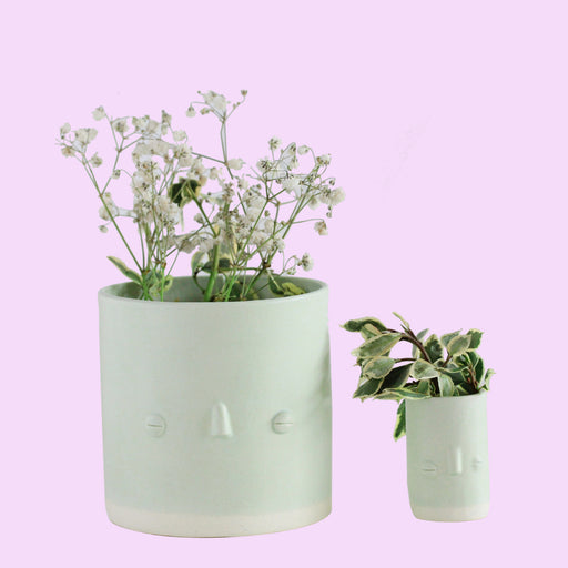 Solid Mint Faceplanter