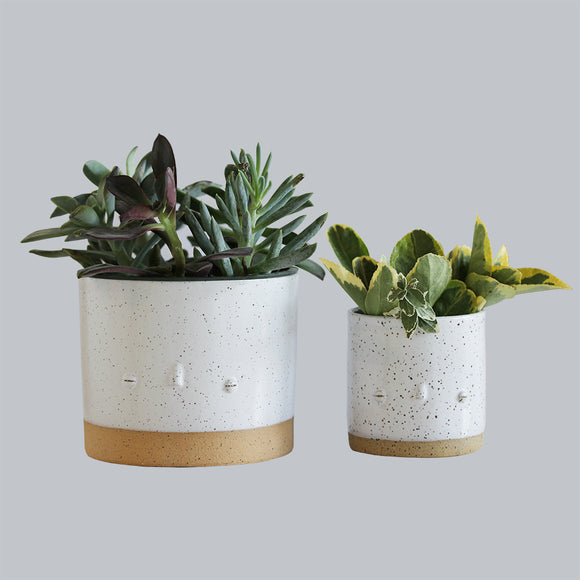 Speckled White Faceplanter