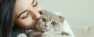 7 Common Mistakes Cat Owners Make