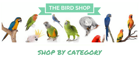 THE BIRD SHOP