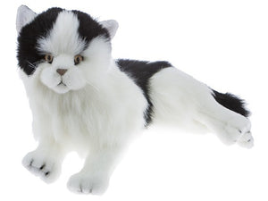 Bocchetta Woodrow Cat Plush Toy