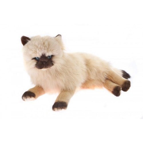 Bocchetta Violet Himalayan Cat Lying Plush Toy