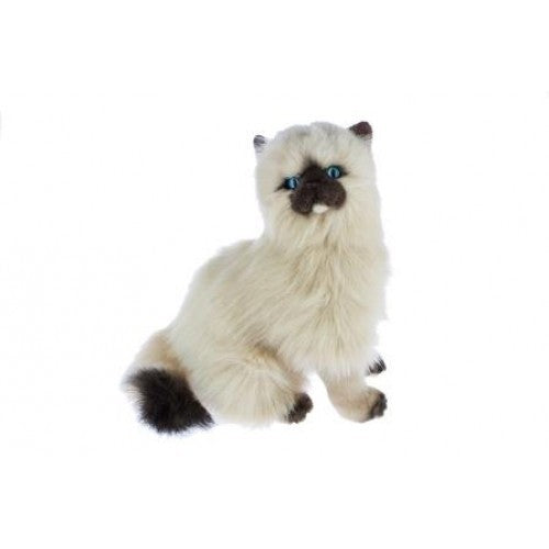 Bocchetta Toffee Himalayan Cat Sitting Plush Toy