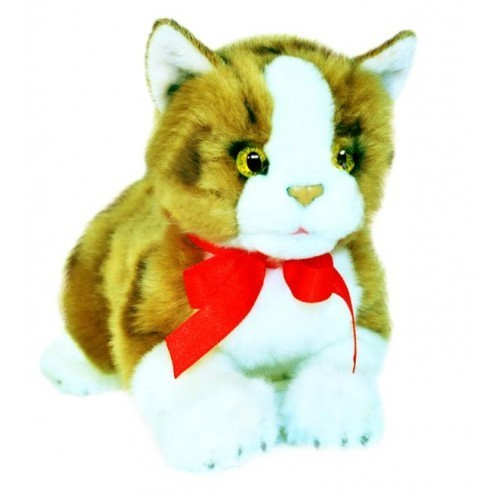 Bocchetta Ginger Cat Plush Toy