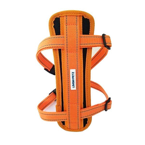 Lovemypetz Chest Comfort Dog Harness Orange
