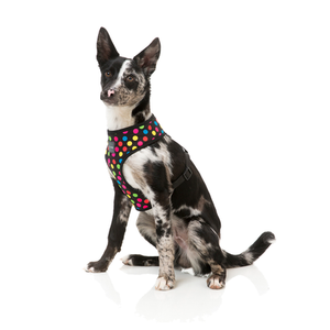 Fuzzyard Dog Harness Cosmic