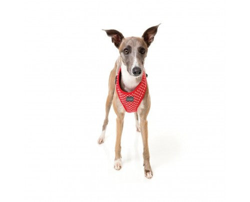 Fuzzyard Dog Harness Under Pressure
