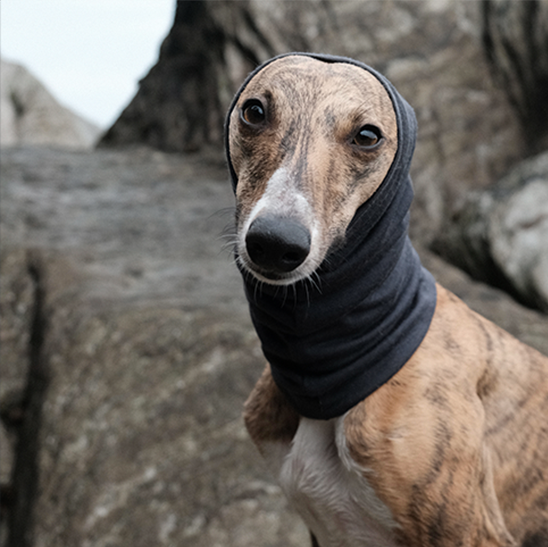 DEEP CHARCOAL SNOOD