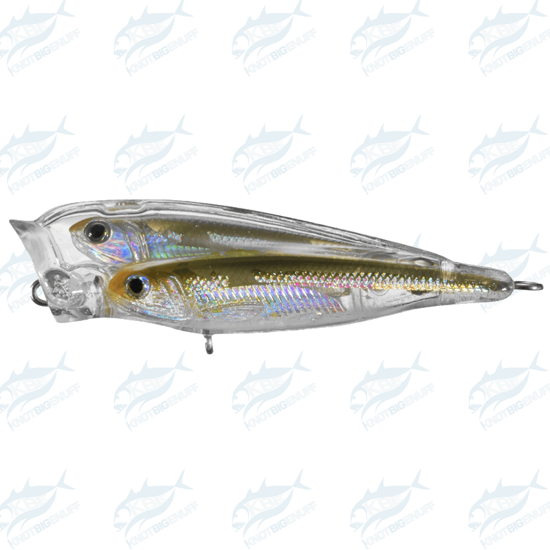 LiveTarget - Glass Minnow Popper GBP