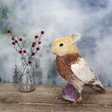 Rogue Taxidermy Brown and Ginger Bunny Bird - Wings Down