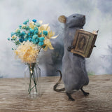 """The Bookworm"" Taxidermy Mouse"