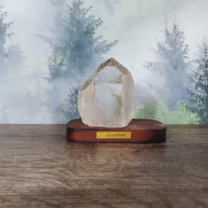 Crystal Point Specimen on Wooden Stand