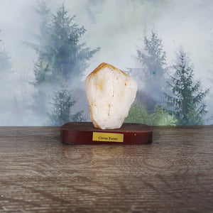 Citrine Point Specimen on Wooden Stand