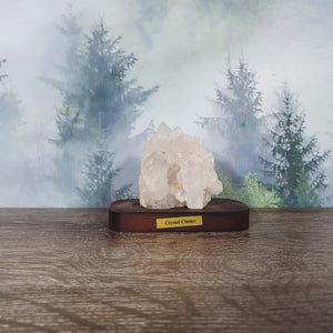 Crystal Cluster Specimen on Wooden Stand