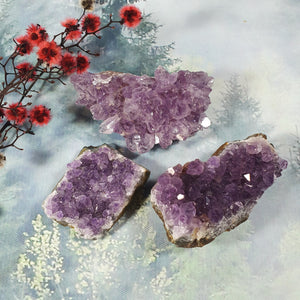 Rough Amethyst Cluster