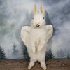 Rogue Taxidermy Pure White Bird Bunny