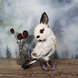 Rogue Taxidermy Black and White Bunny Bird - Wings Down