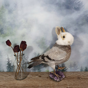 Rogue Taxidermy Grey, Tan and White Bunny Bird - Wings Down