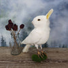 Rogue Taxidermy Pure White Bunny Bird - Wings Down