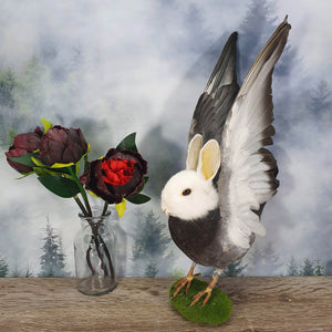 Rogue Taxidermy White and Grey Bunny Bird - Wings Up