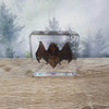 Real Bat Specimen in Square Resin Block