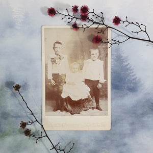 Two Brothers With Sister Cabinet Card
