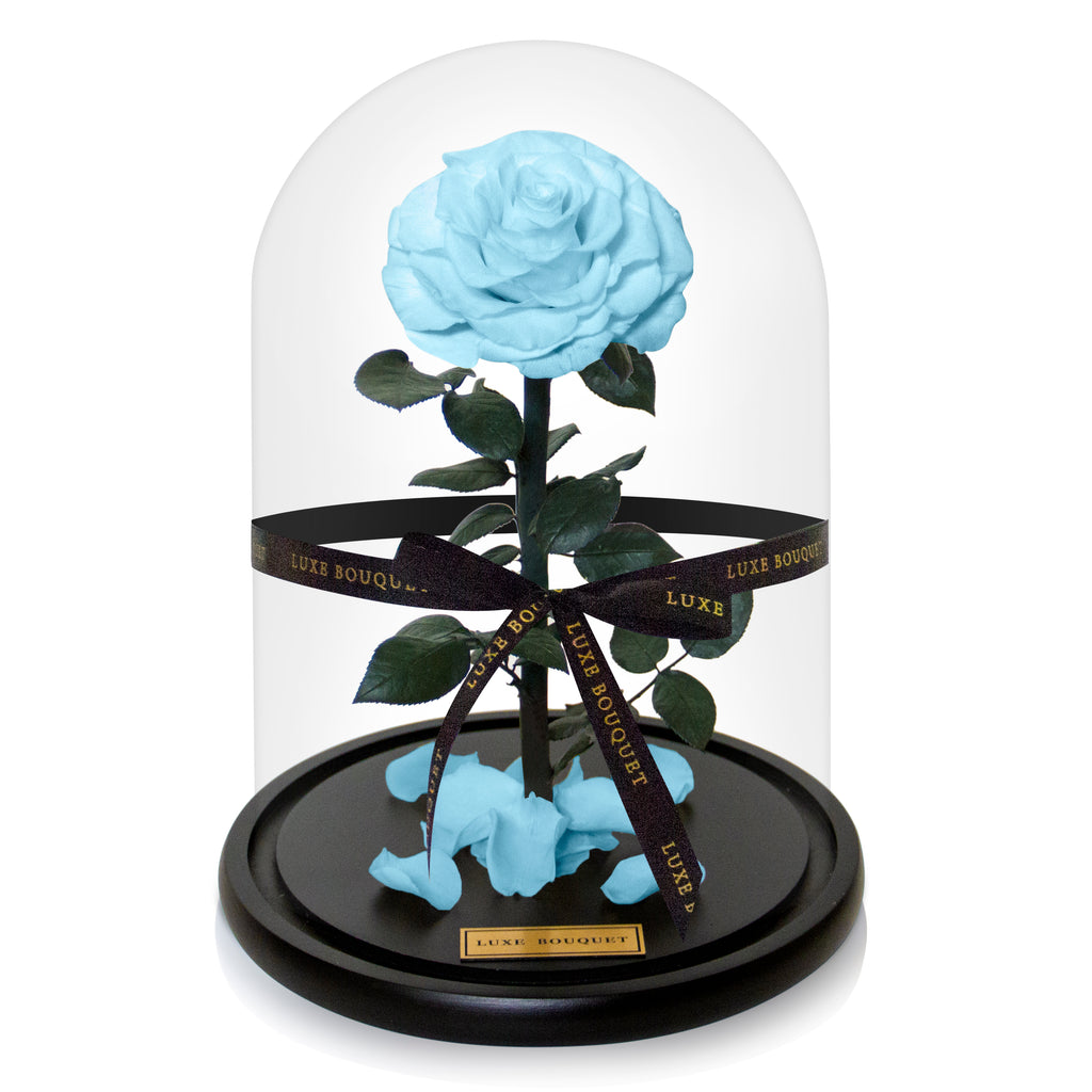Baby Blue Everlasting Rose Dome