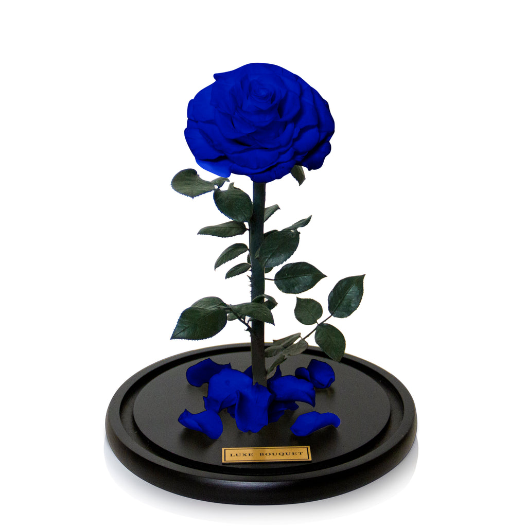 Royal Blue Everlasting Rose Dome