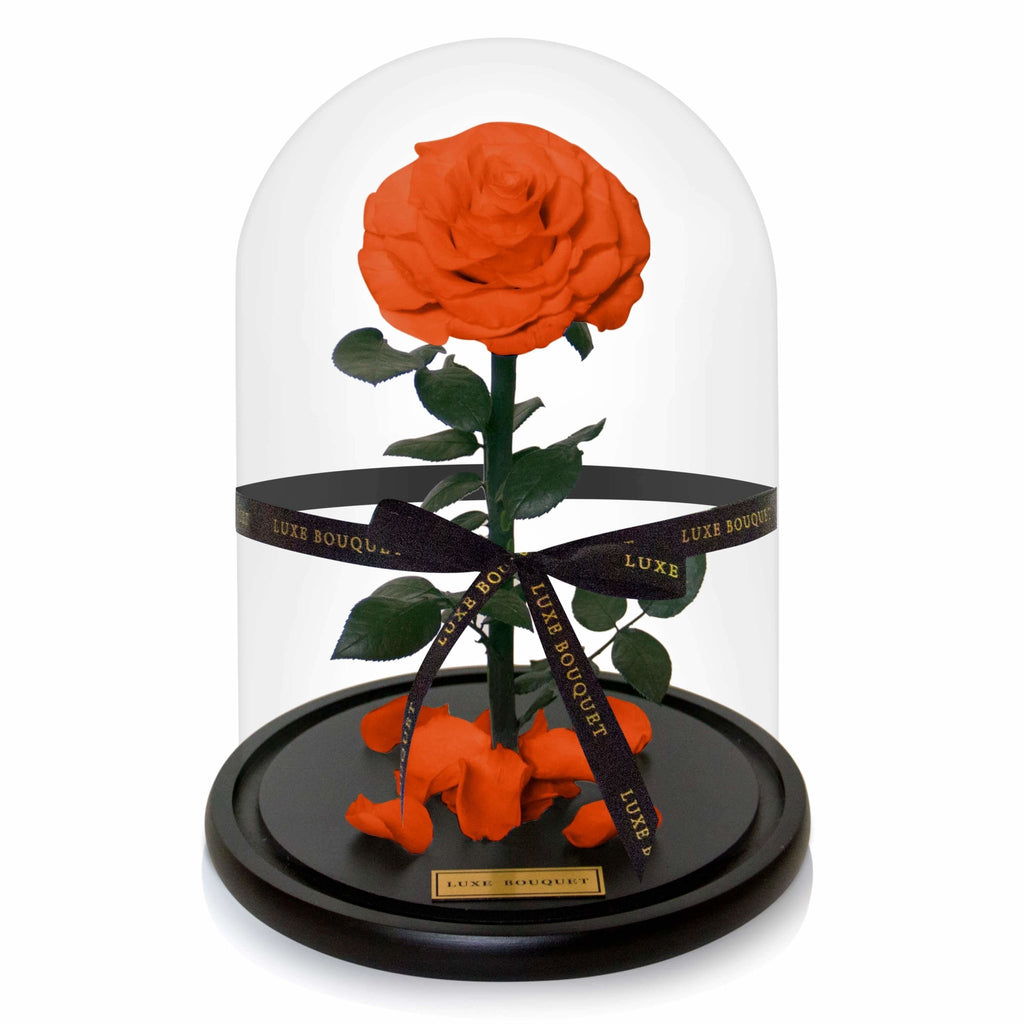 Everlasting Rose - Orange - LUXE BOUQUET roses that last a year