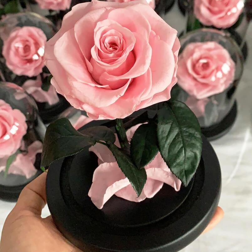 Mini Everlasting Rose - Pink - Luxe Bouquet roses that last a year