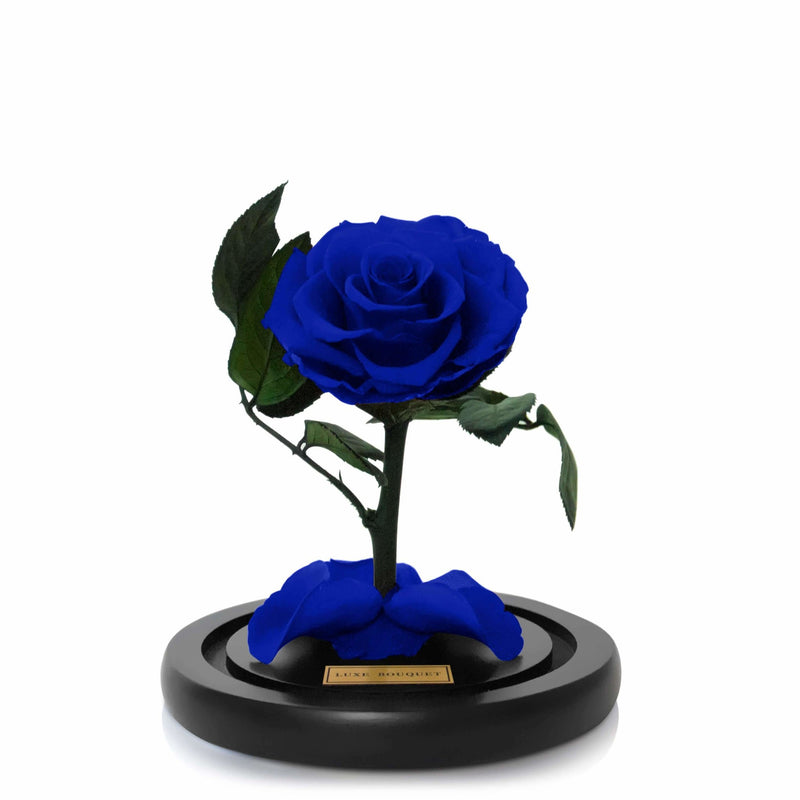 Mini Everlasting Rose - Royal Blue - Luxe Bouquet roses that last a year