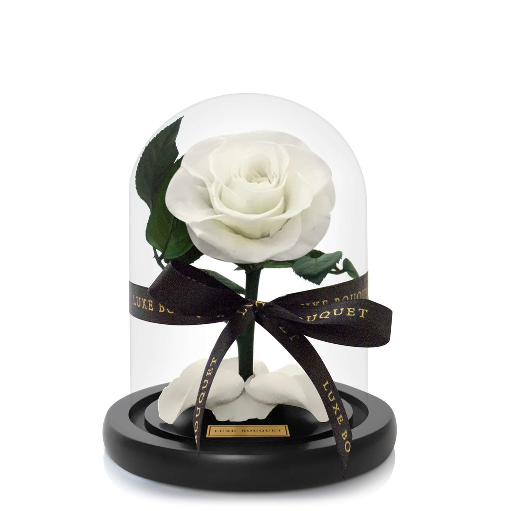 Mini Everlasting Rose - White - Luxe Bouquet roses that last a year