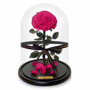 The Everlasting Rose - Fuchsia - Luxe Bouquet roses that last a year